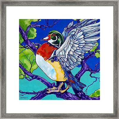 Wood Duck Framed Print by Derrick Higgins
