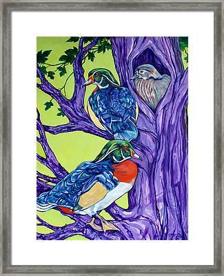 Wood Duck Tree Framed Print by Derrick Higgins