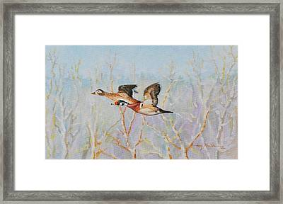 Wood Ducks Framed Print