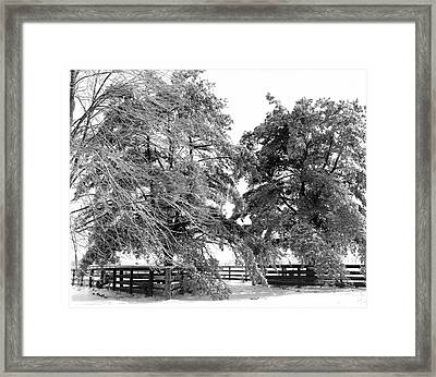 Wood Fence Framed Print