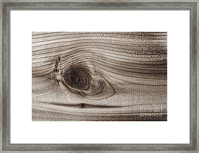 Wood Knot Abstract Framed Print by Elena Elisseeva