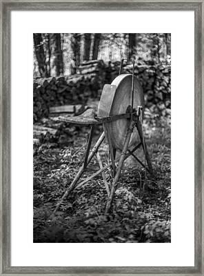 Wood Lot Framed Print