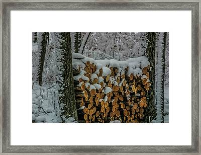 Wood Pile Framed Print by Paul Freidlund