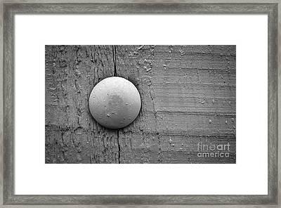 Wood Pin  Framed Print by Jolanta Meskauskiene