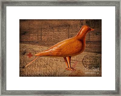 Wood Postal Pigeon Framed Print