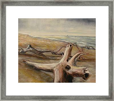 Wood Sand Water And Sky Framed Print