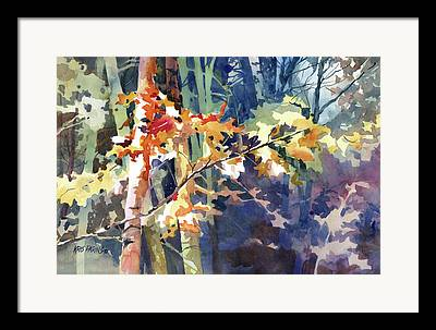 Northwoods Framed Prints