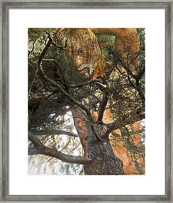 Wood Sprite Framed Print
