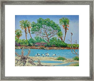 Wood Stork Beach Party Framed Print by Dwain Ray
