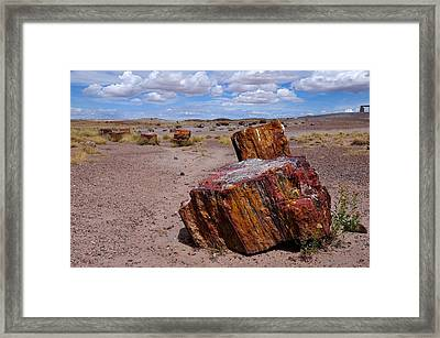 Wood To Stone Framed Print by Gene Sherrill