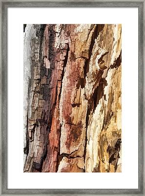 Wood Tones Framed Print