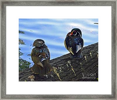 Framed Print featuring the photograph Wood You Love Me Forever by Robert Meanor