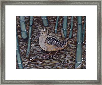 Woodcock In The Bamboo Framed Print by Richard Goohs