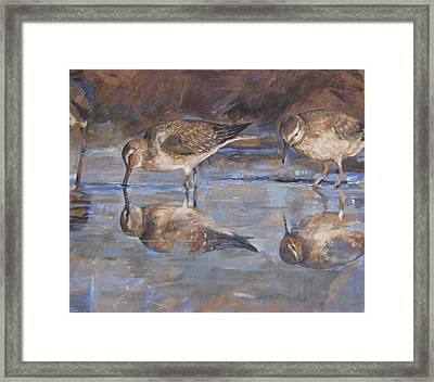 Woodcocks In A Pond Framed Print by Anke Classen