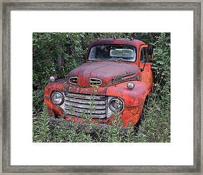 Framed Print featuring the photograph Wooded Ford by Christopher McKenzie