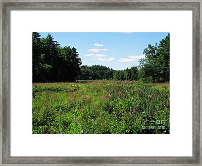 Wooded Paradise Framed Print