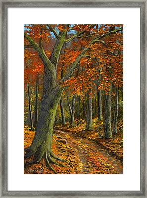 Wooded Road Framed Print by Frank Wilson