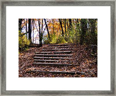 Wooded Stairs Framed Print
