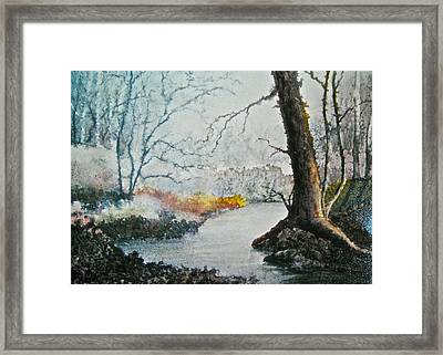 Wooded Stream Framed Print by Carolyn Rosenberger