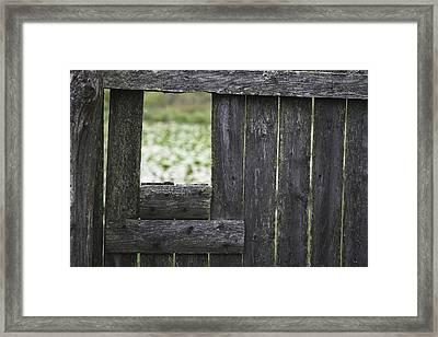 Wooden Blind Framed Print