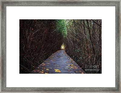 Wooden Bridge Framed Print by Niphon Chanthana