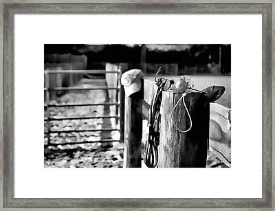 Wooden Fence Framed Print by Pamela Blizzard