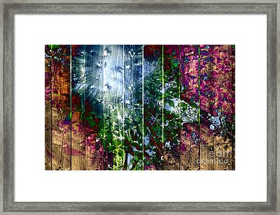 Wooden Planks And Sunlight Streaming Through Leaves I Framed Print