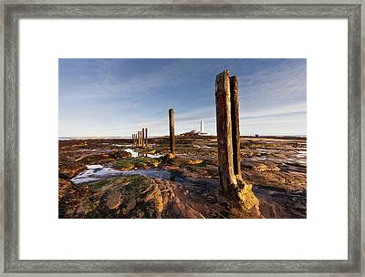 Wooden Posts At The Water S Edge Framed Print