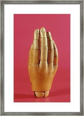 Wooden Prosthetic Hand Framed Print