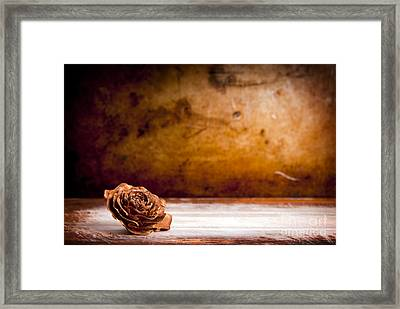 Wooden Rose Background Framed Print by Tim Hester