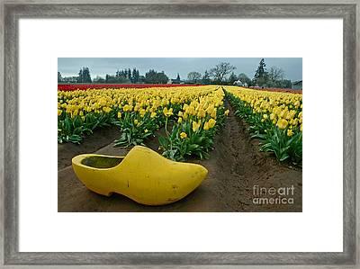 Wooden Shoe Tulip Fields Framed Print