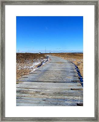 Framed Print featuring the photograph Plum Island by Eunice Miller