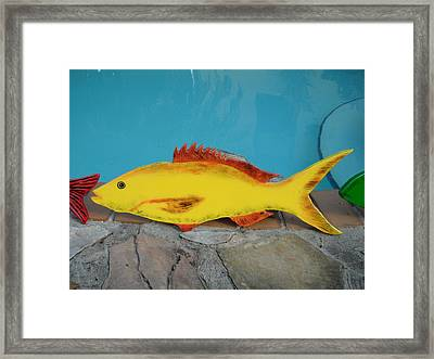 Wooden Yellow Tail Framed Print by Val Oconnor