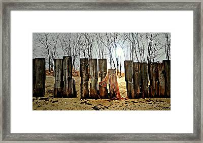 Woodhenge Framed Print by Diana Angstadt