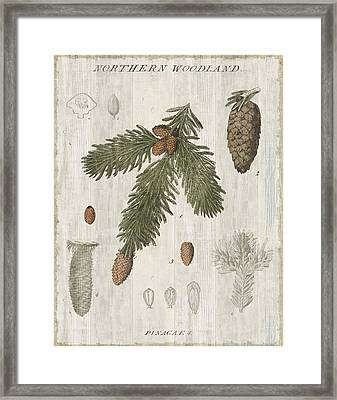 Woodland Chart V Framed Print by Sue Schlabach