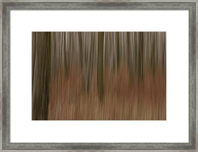 Woodland Dreams Framed Print by Penny Meyers