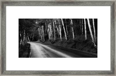 Woodland Drive Framed Print by Wendell Thompson