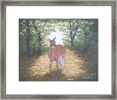Woodland Encounter Framed Print