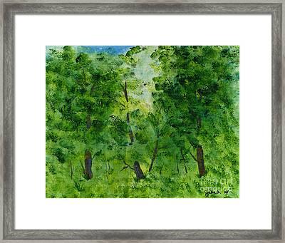 Woodland Haven Framed Print