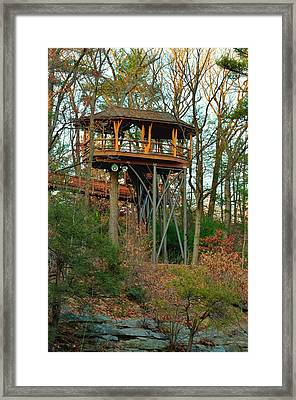 Woodland Hightower Framed Print by Maria Urso