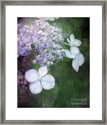 Woodland Hydrangea In Blue Framed Print by Kathi Mirto