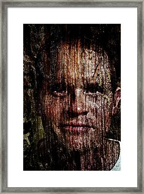 Woodland Kin Framed Print by Christopher Gaston