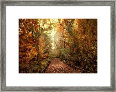 Woodland Light Framed Print by Jessica Jenney