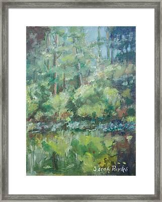 Woodland Pond Framed Print by Sarah Parks