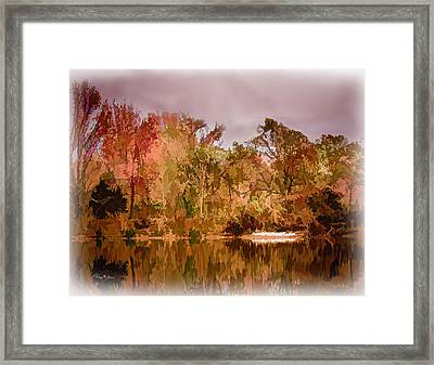 Woodland Reflections Framed Print by Barry Jones