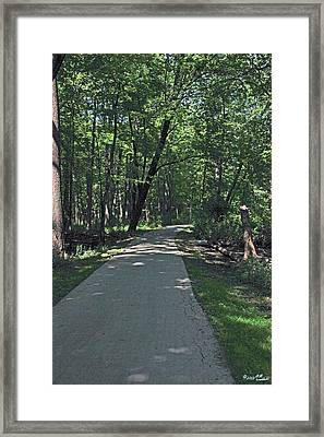 Woodland Road Framed Print