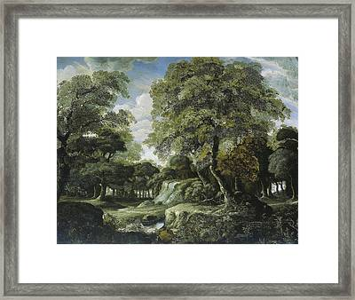 Woodland Scene, Jan Van Der Heyden Framed Print by Litz Collection