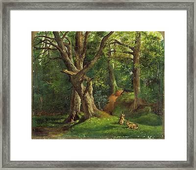 Woodland Scene With Rabbits Possibly Signed Framed Print
