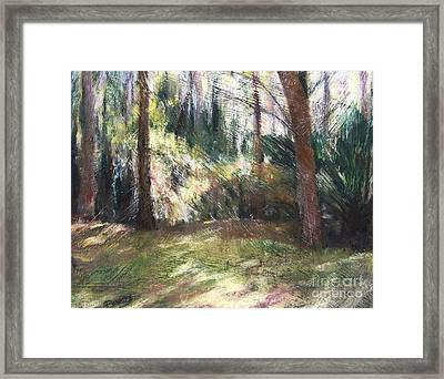Woodland Shadows Framed Print