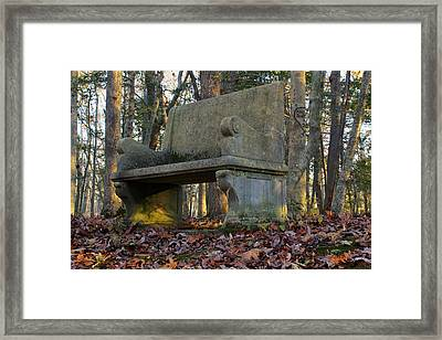 Woodland Throne Framed Print by Andrew Pacheco